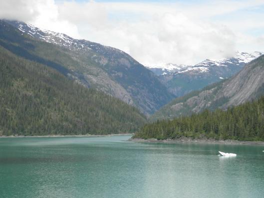 Endicott Arm Fjord